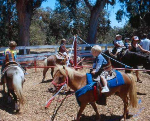 بازی جشن تولد وسترن - اسب سواری - اسبچه برای پسرها