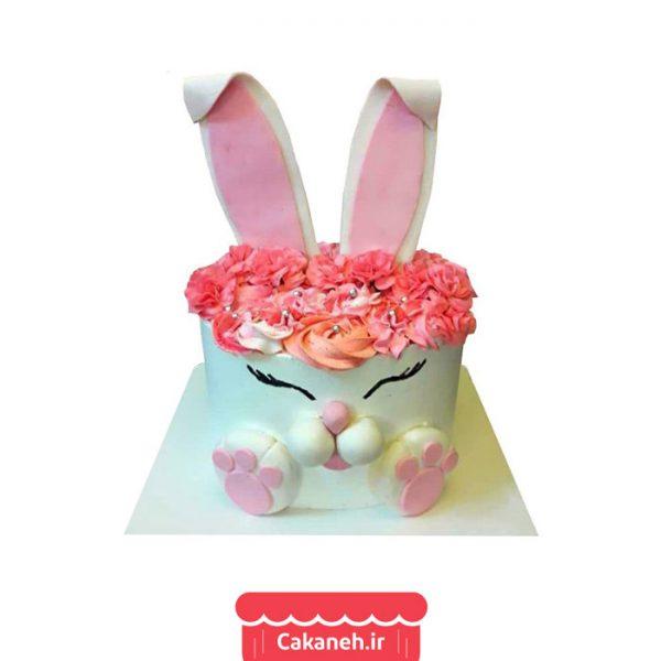 کیک تولد کودک - کیک تولد - کیک خانگی - سفارش کیک تولد - کیک تولد در اصفهان