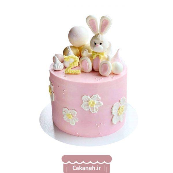 کیک تولد خرگوش - کیک تولد کودک - کیک تولد دخترانه - کیک خانگی - سفارش کیک تولد - کیک تولد در تهران